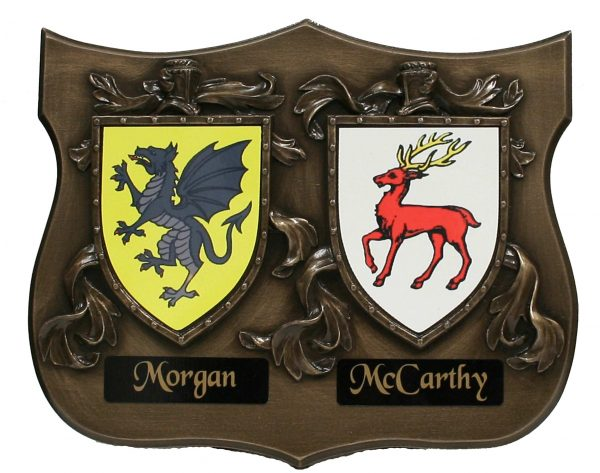 Double Bronze Wall Shield